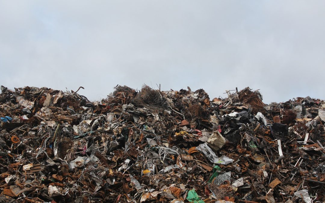 Waste Management Crisis